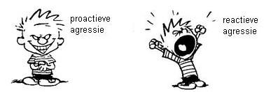 proactiefvsreactieve_agressie_gedragsproblemindeklas